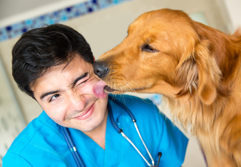 Know the value of veterinary technicians during National Veterinary Technician Week